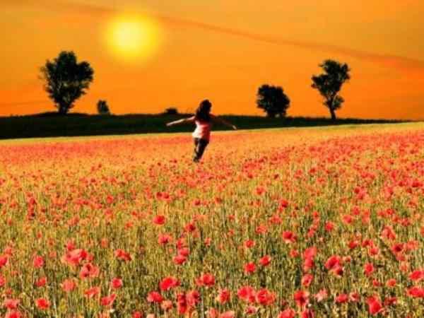 El feliz secreto de la felicidad para trabajar mejor.